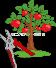 Грушевое дерево картинка